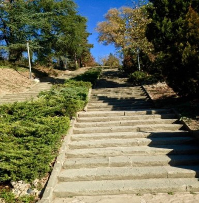 The stairs I walk to enter the park while reminding myself of my favorite poems.