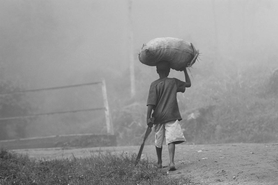Young boy farming | Image courtesy of Pixabay