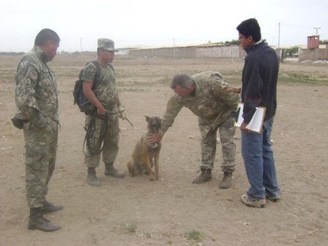 Me (on the far right) training the dogs.