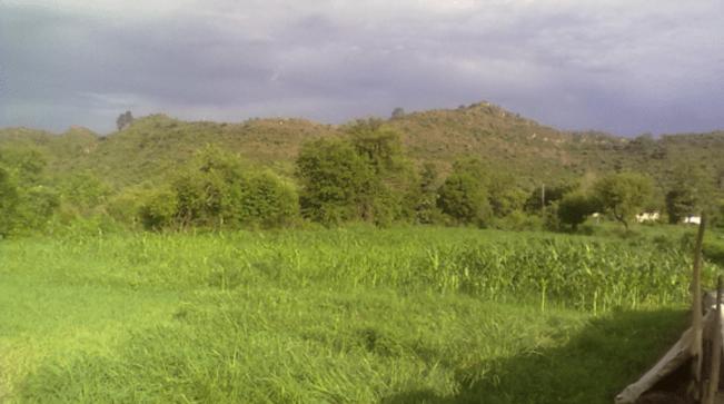 My village, 2012.