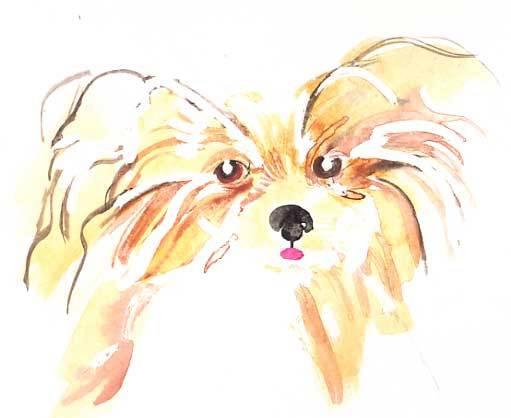 Puppy in watercolor, by Geneva.