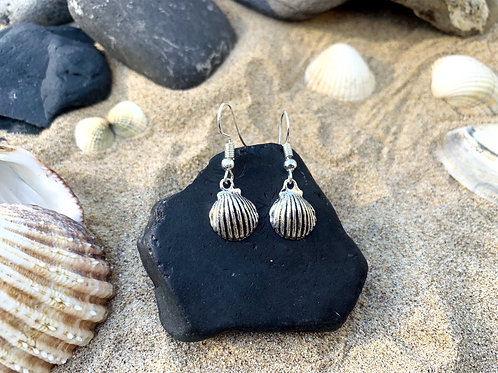 Baby Shell Earrings