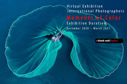 virtual exhibition_International Photographers _Moments of Color