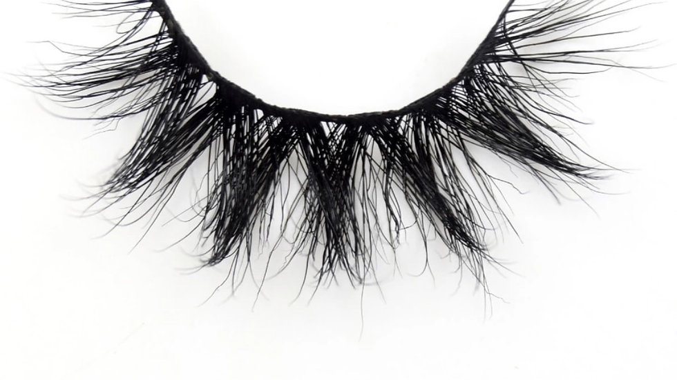 The Star Lash