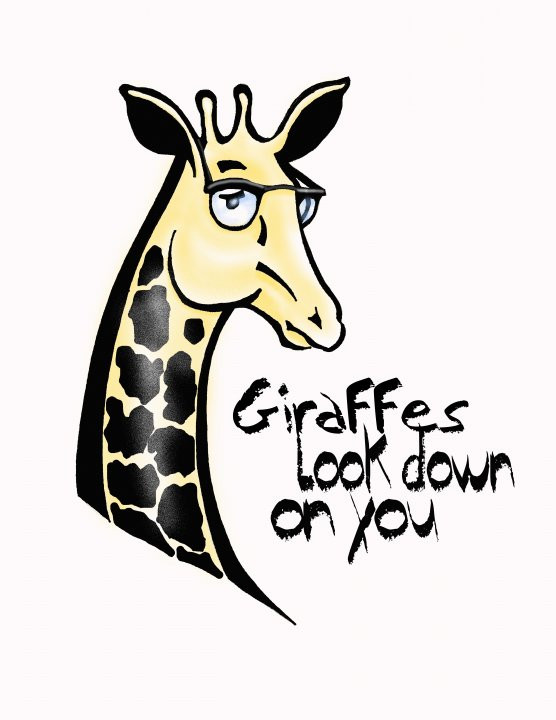 Giraffes Look Down On You