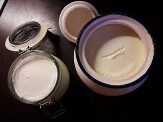Как да си приготвим кисело мляко в домашни условия