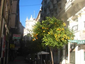 Валенсия - земята на портокалите и Калатрава