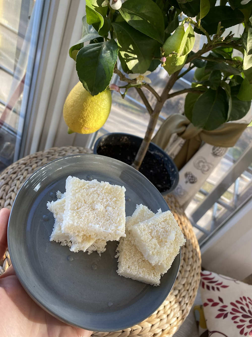 Coconut-lemon vegan bars