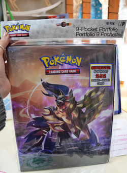 Portfolio 252 cartes Pokémon épée & bouc