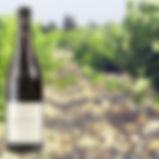 Provence vins