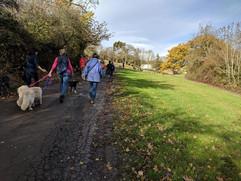 group walks 2.jpg