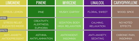 Limonene Pinene Mycrene Linalool Caryophyllene Terpenes Terpene Hemp CBD Products