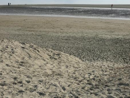 28. Tahunanui Beach Sand