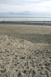 29. Sand near Nelson