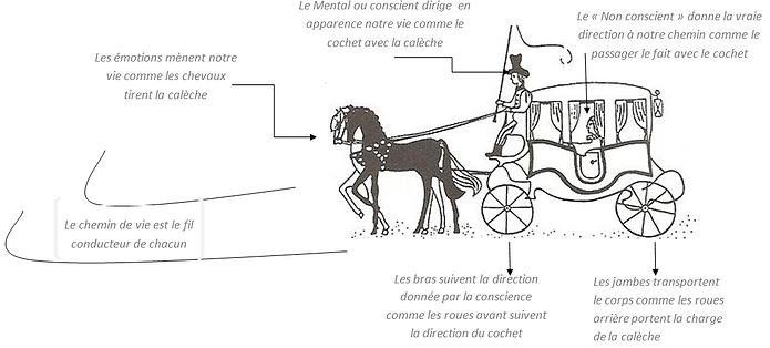 Allégorie de la Calèche, Platon ; sophrologue toulouse borderouge croix daurade 31200