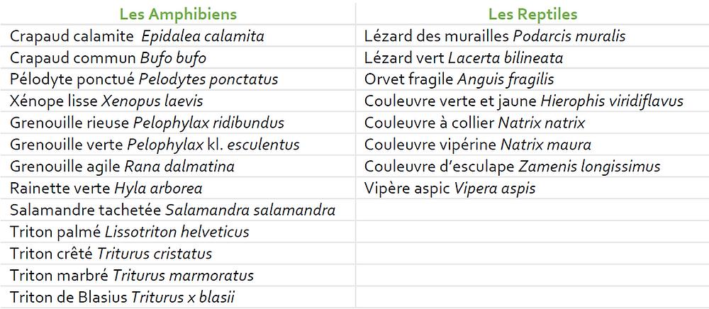 Espèces inventoriées