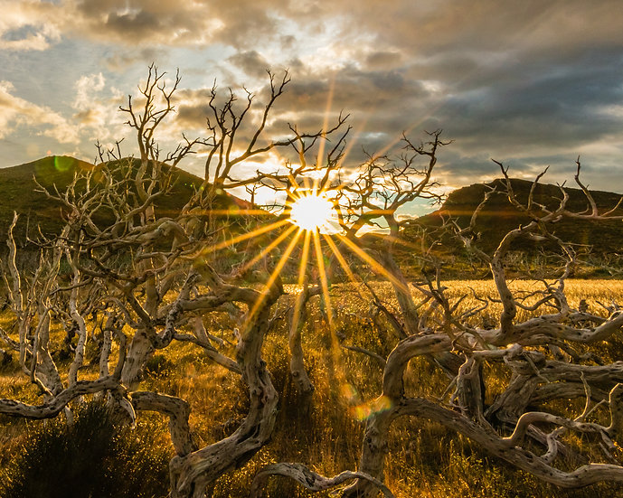 Patagônia - Raios de Sol