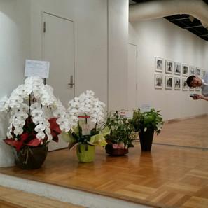 ART Exhibition starts