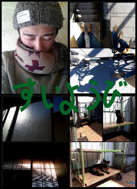 15.3.16_aki3.jpg