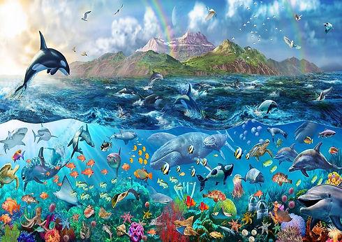 orca jumping rainbow.jpg