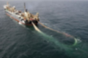 super trawler with net.jpg