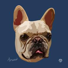 Portrait | Bruno