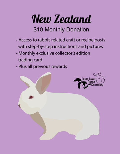 Patreon Rewards - New Zealand