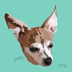 Portrait | Frankie