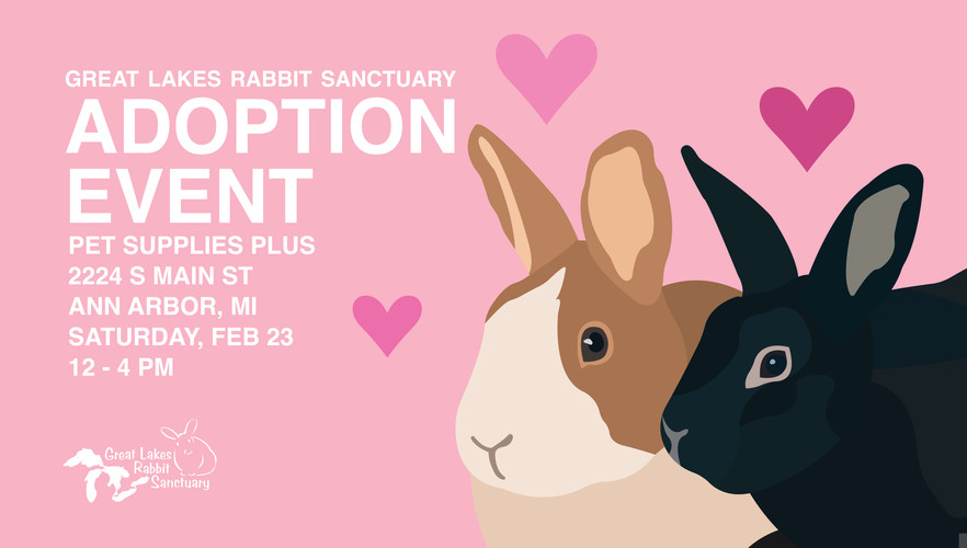 February Adoption Event