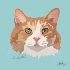 Portrait | Biscuit