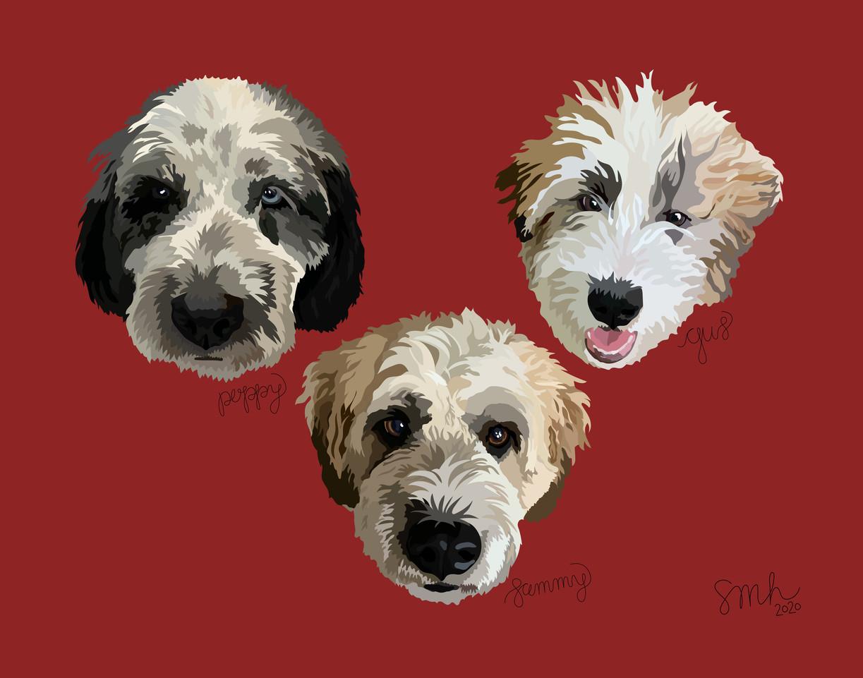 Sammy, Gus, & Poppy