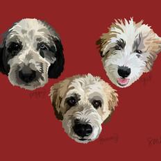 Portrait | Sammy, Gus, & Poppy