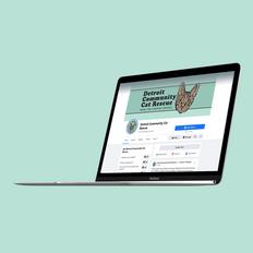 Detroit Community Cat Rescue | Social Media Banner