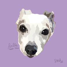 Portrait | Bella