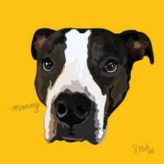 Portrait | Manny