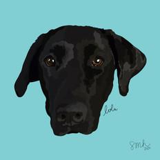Portrait | Lola