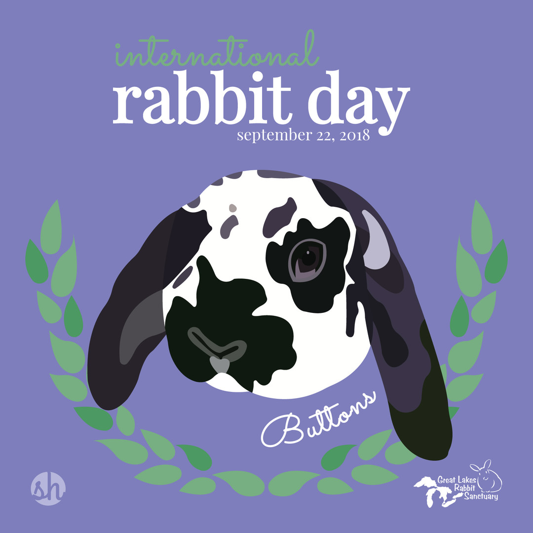 International Rabbit Day - Buttons