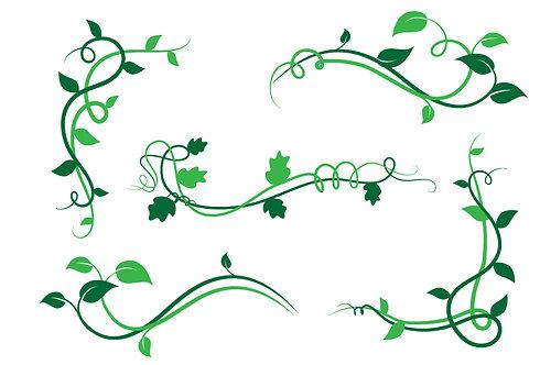Flora Deco Green