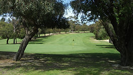 Embelton golf course