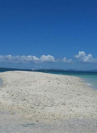 サンゴで出来た幻の島❗