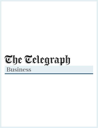 The Telegraph   Business
