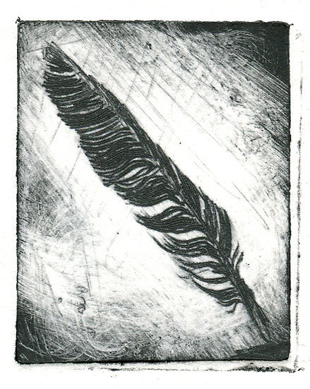 An illustration showing a dark feather