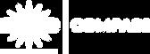 BRIGHTSTAR_Logo_White.png