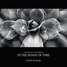 IN THE SHADE OF TIME - AFiS (JPEG).jpeg