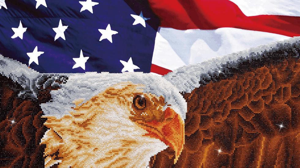 Diamond Dotz Bald Eagle and Flag