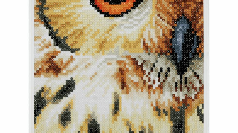 Lanarte: Diamond Painting Kit: Owl