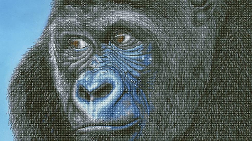 Diamond Dotz Kibali Western Lowland Gorilla