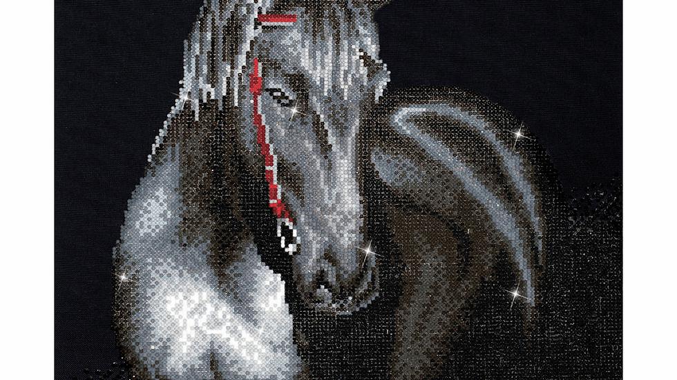 Diamond Dotz Midnight Stallion