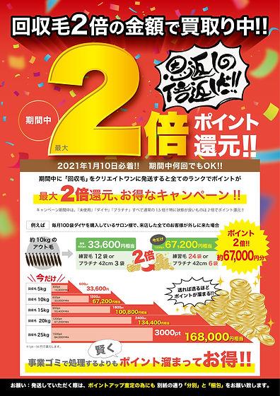 2010_エコエク回収毛ポイント2倍_アートボード 1.jpg