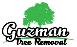 guzman-logo-edited-header.jpg